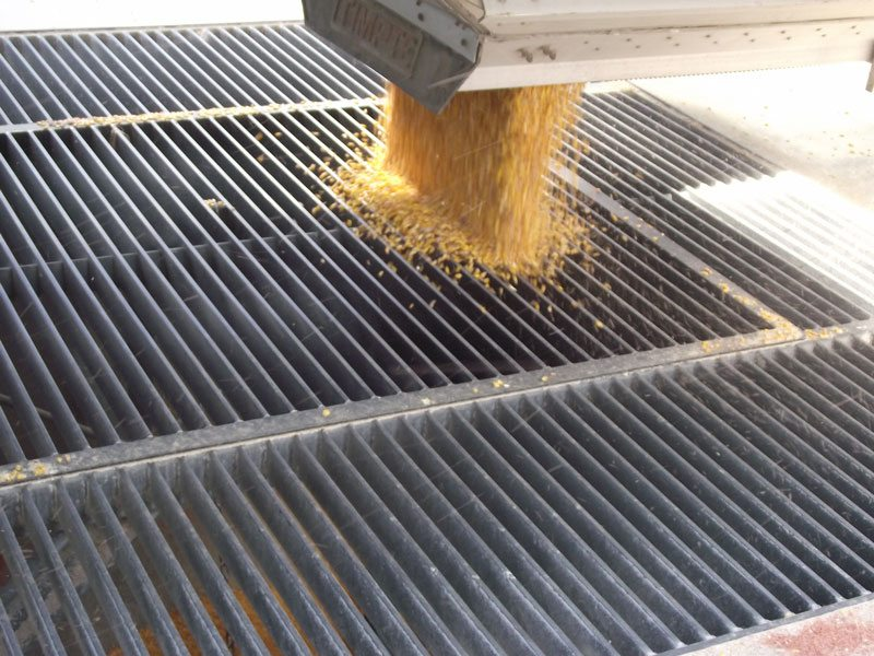 Grain Handling And Transfer Fs Construction Services