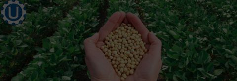 Seed Treatment Savings Programs
